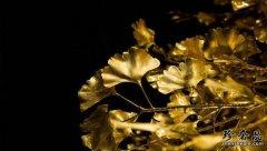 济南现在黄金首饰回收价格行情好不好